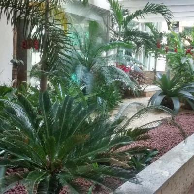 Bom apt Jardim Icaraí 2 quartos